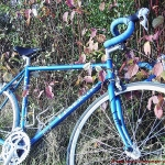 Autum ride Lemond_teaser pic
