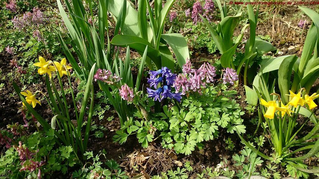 Easter Flower Beds
