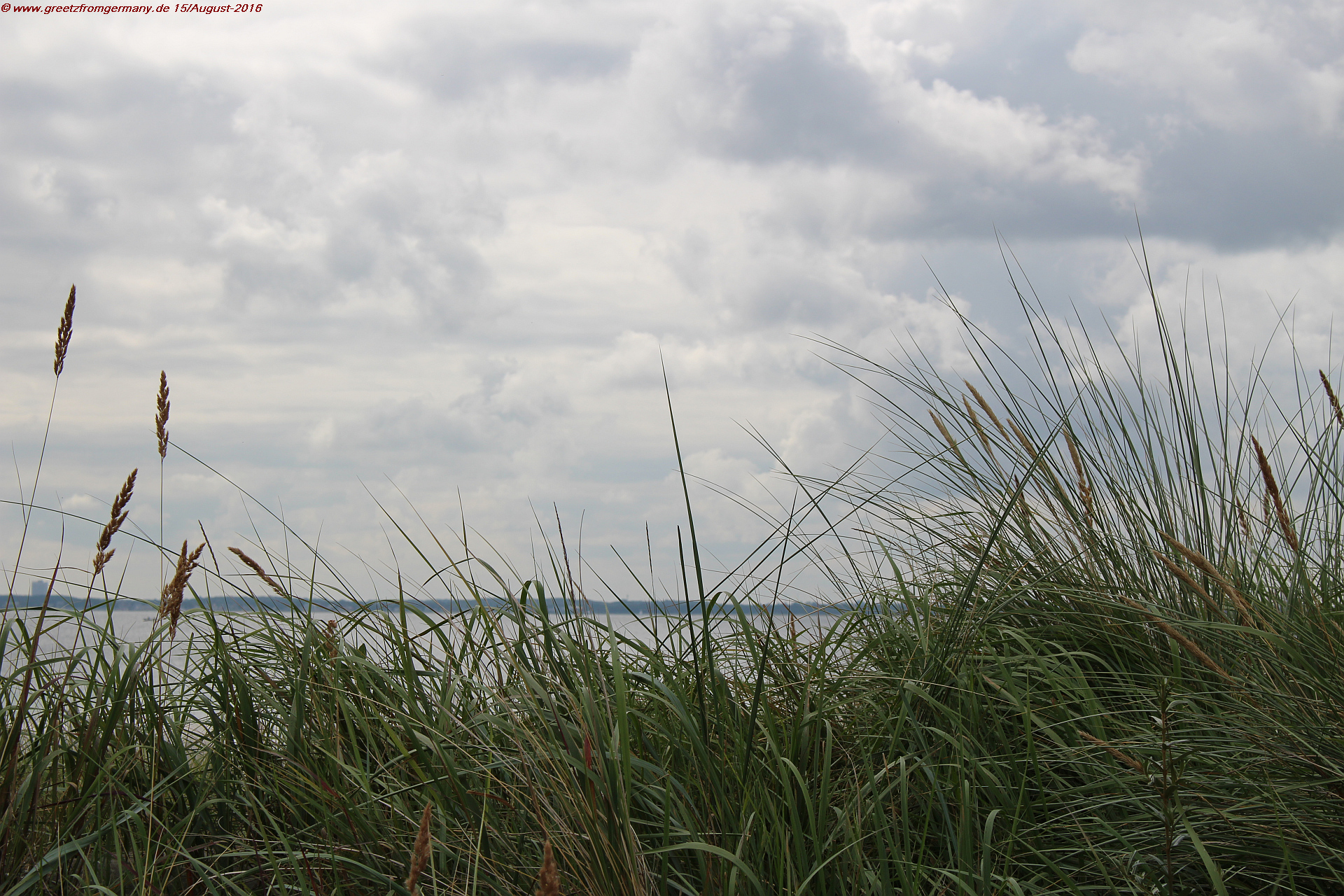 Beach grass, sand, water and clouds - the view opens wide unto the Baltic Sea at the beaches of little villages like Scharbeutz